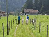 Gutschein für einen Alpaka-Spaziergang