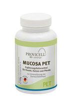 für die Darmschleimhaut: MUCOSA PET 59g (120 Kapseln)