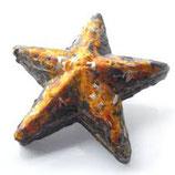 Teeschmuckstücke Stern