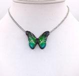 Pendentif papillon 3d vert bleu - inox