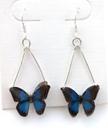 Boucles d'oreilles papillon bleu