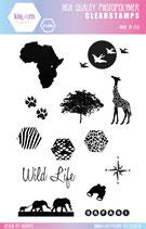 Clear Stamps SAFARI by kioArts
