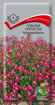 Лобелия плетистая Рубиновый фонтан