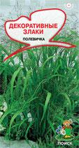 Декоративные злаки Полевичка