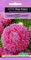 Астра Леди Корал бриллиантово-розовая