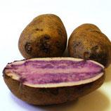 Картофель Vitelotte (Французский Трюфель)