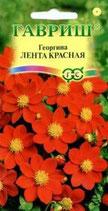 Георгина Лента красная