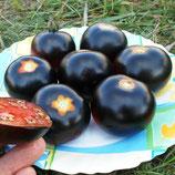 Помидоры Каштановый Шоколадный — Chestnut Chocolate Tomato