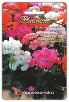 Пеларгония зональная карликовая F1 НАНО смесь расцветок