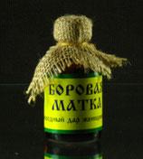 :БОРОВАЯ МАТКА