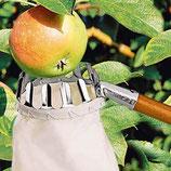 Приспособление для съема плодов с дерева