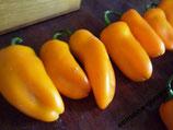 Сладкий Мини Перец — Orange Sweet