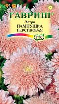 Астра ПАМПУШКА персиковая