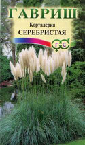 Кортадерия Серебристая (Пампасная трава)
