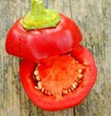 Перец Яблочный Онтара - Ontara Pepper