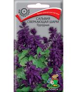 Сальвия Сверкающая ШАРМ пурпурная