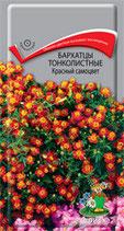 Бархатцы тонколистные Красный самоцвет