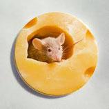 =Приманка от крыс 120г