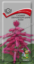 Сальвия СВЕРКАЮЩАЯ ШАРМ розовая