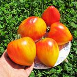 Помидоры Coeur de Zebre Apricot — Сердце Абрикосовой Зебры