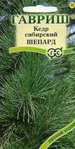 Кедр Сибирский Шепард