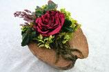 Kokosnusshälfe Farbe Natur mit konservierter roter Gardenia
