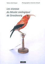 Vesque Julia - Artault Victorine