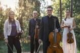 Arminio-Quartett: Beethoven