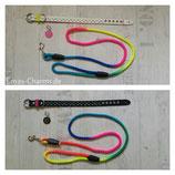 Set aus Halsband, Regenbogenleine und Adressanhänger