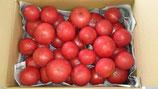 わけあり完熟トマト特価! 有機JAS認定圃場 農薬、化学肥料、除草剤不使用!(送料無料)