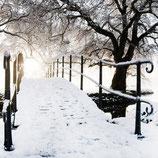 Brücke im Winterkleid