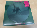 Robert Wyatt - A Short Break (Single-sided Picturedisc)