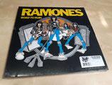 Ramones - Road To Ruin (3CD/LP-Box Set)