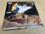 The Pictish Trail - Future Echoes (2LP)