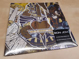 Bon Jovi - What About Now (2LP)