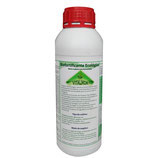 . Fertilizante de Moringa Vitalmor Bioactivador Ecológico (Envases de 1 litro y de 5 litros)