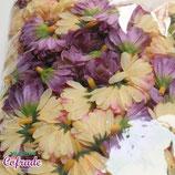 Flores 10 / 3-4cm