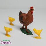 Crías de gallinas y gallina