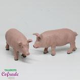 Cerdo - unidad