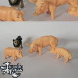 Conjunto cerdos y perro