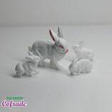 Conejo y crías