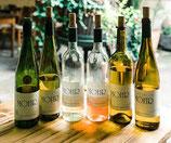 Steil gehen-Wein- Genuss-Set
