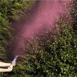 Rauchkanone rosa