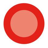 Apfelbrand »Klarapfel«