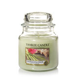 Yankee Candle Lemongrass & ginger mittel