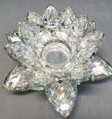 Seerose  Kristal