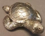 Schildkrot  Silber