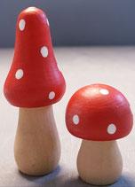 Pilze  Holz