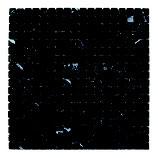 Mosaico in Nero Marquinia anticato