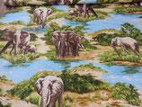 Elefanten - Savanne